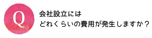 kaishasetsuritu-qa-004-q